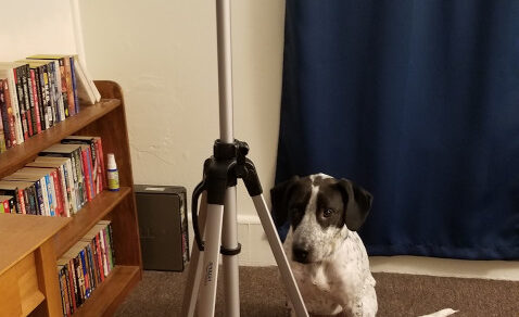 Azuirk the ViDOGrapher