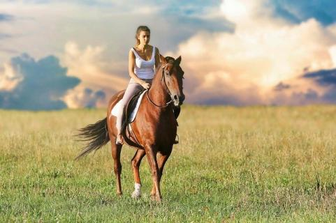 Ride the horse